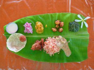 south indian dishes, South india, south Indian food, north india, north Indian food